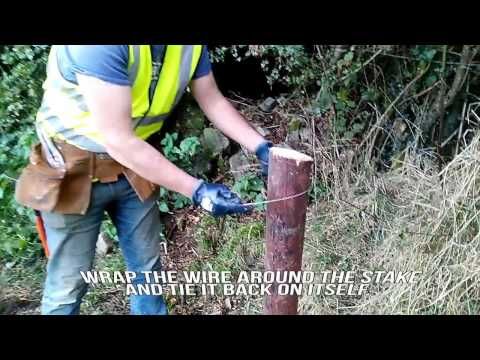 Farmer know-how: erect single-strand electric fencing