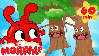 The Trees are Alive!  Morphle and Animi | Cartoons for Kids | Mila and Morphle TV