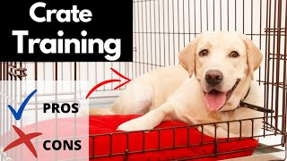 Crate Training A Puppy | The Pros AND Cons Of Crate Training A Dog