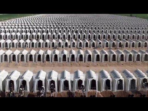 Молочная промышленность за 5 минут