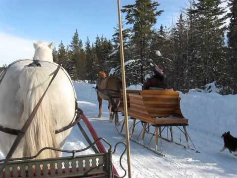 Valentines sleigh drive.