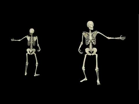 3d skeleton motion capture - youtube, Skeleton