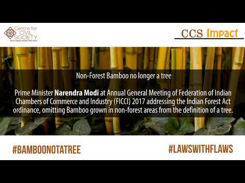 PM Narendra Modi on Deregulating Bamboo Trade and