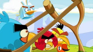 Angry Birds Punisher   Best Games VK