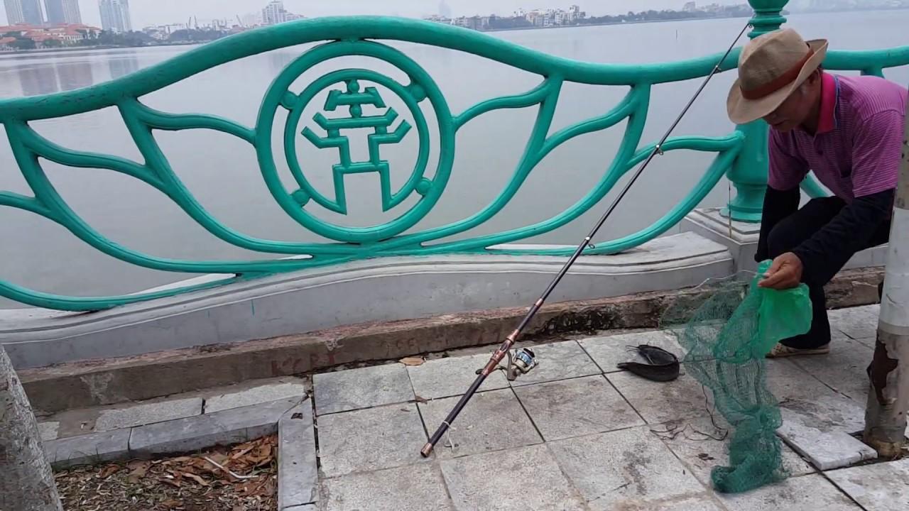 Lang thang Hồ Tây Hà Nội gặp bác câu cá vụng về gỡ lưỡi câu và cái kết