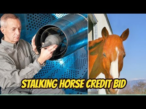 STALKING HORSE CREDIT BID: WE NEED COURT APPROVAL BEFORE STARTING A COURT SUPERVISED SALES PROCESS