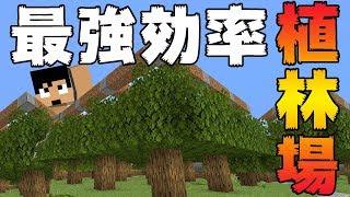 【カズクラ2020】最強効率の植林場作ってみた!マイクラ実況 PART54