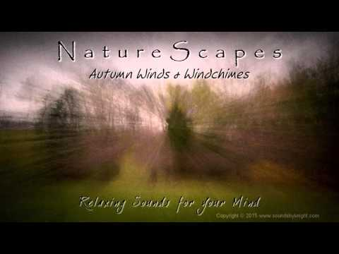 🎧 AUTUMN WINDS & WIND CHIMES - Soothing, Meditating Nature Sounds to help Relax, Unwind and Sleep