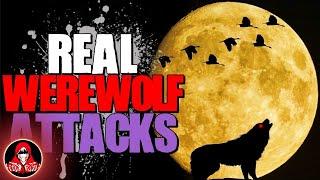 4 REAL Werewolf Attacks - Darkness Prevails