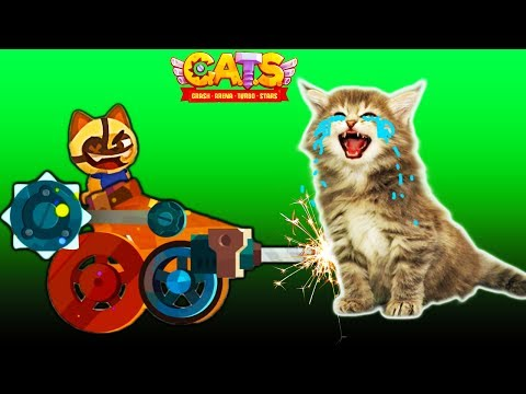 The war of the LIONS #4 video for kids in CATS funny colorful cartoon children's game