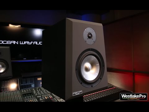 Ocean Way Audio Pro2A Studio Monitor | Allen Sides Review with Westlake Pro