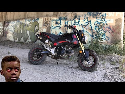 Can A Honda Grom Handle The Dirt ?