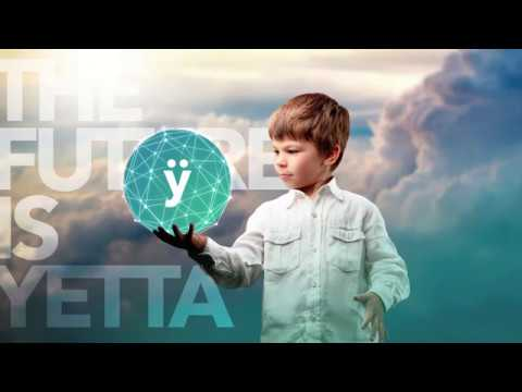 Yetta is an Electronic Cash System for the Digital Economy