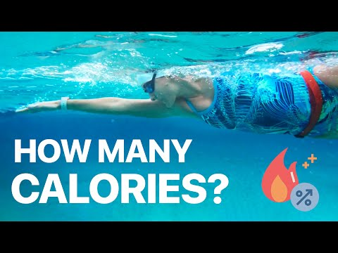How Many Calories Do You Burn Swimming? 🔥