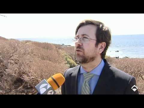 Canarias-África y Europa unidos por cable