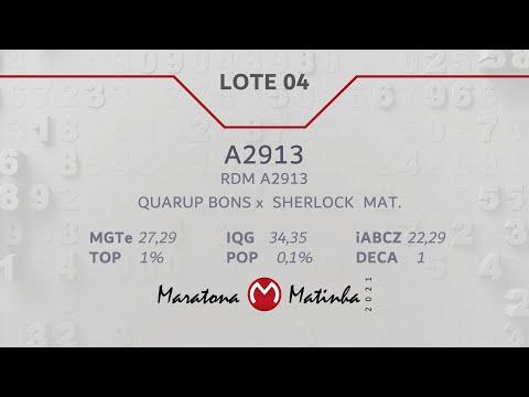 LOTE 04  Maratona Matinha