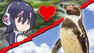 Adiós Grape-kun, Batalla de Waifus | Dracer Noticias