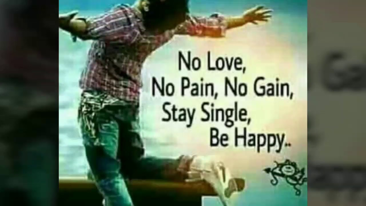 no love no pain no gain stay single be happy rajesh shayari