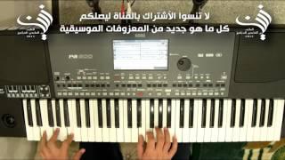 عزف اغنية كتير بنعشق للفنانه شيرين | Audio HD 2017