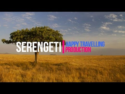 Serengeti National Park Travel Guide: World's Best Places to Visit