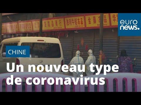 Chine: un nouveau type de coronavirus ravive le douloureux souvenir du SRAS