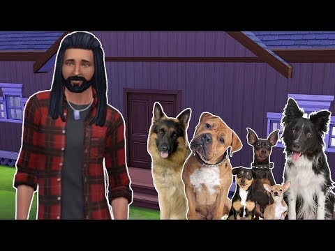 CHALLENGE 6 CHIENS ! Sims 4 Préparation Let's Play Animaux