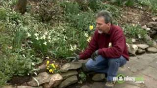 April Gardening Tips - Perennials, Annuals, Bulbs