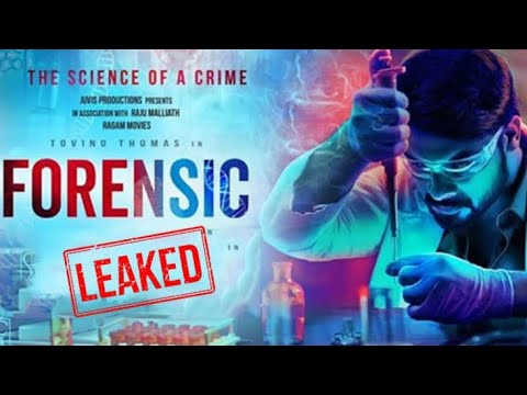 Malayalam Full Movie Forensic Download Tc Techy Youtube