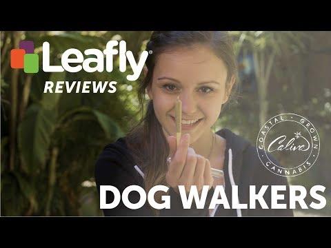 Dogwalker Pre-Rolls by Caliva – Leafly Reviews
