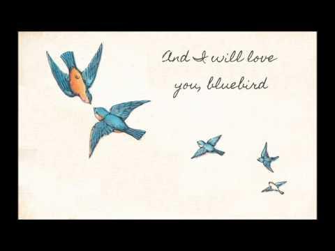 Bluebird - A Destiel Fan Song