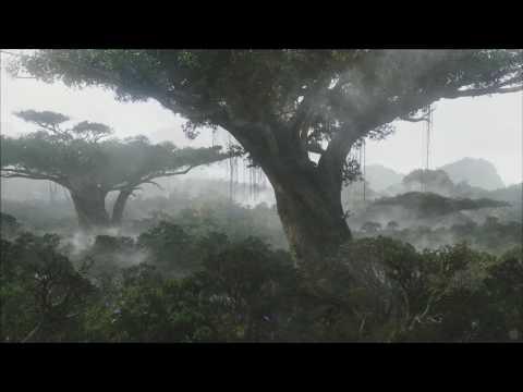 milieu (autumn fog lifts)