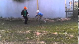 школота-гобота 1 серия 1 сезон
