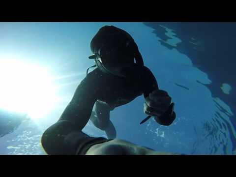 100' freedive at Casino Point, Catalina Island