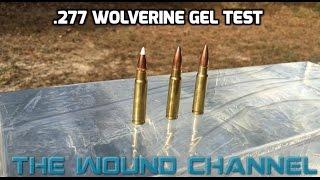 .277 Wolverine Gel Test