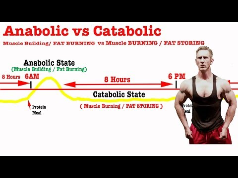 Anabolic vs Catabolic is KEY to FAT LOSS