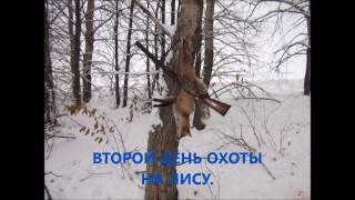 Охота с гончими на лису.