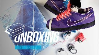 Purple Lobster Dunk Unboxing + Review