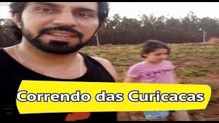 Correndo das Curicacas - Tente não Rir