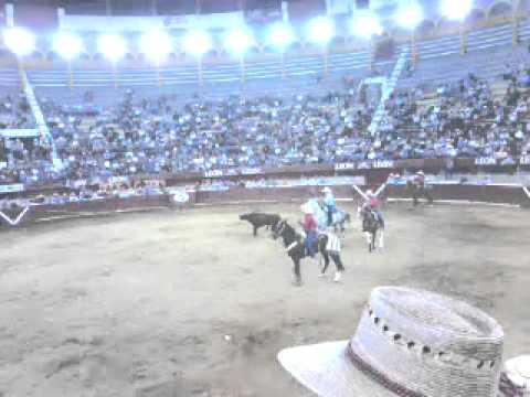 Toro la furia roja en la monumental 19/02/14