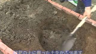 庭木・果樹苗の植え方【コメリHowtoなび】