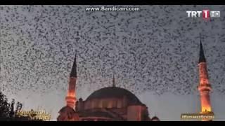 Ramazan Sevinci(Iftar duasi)