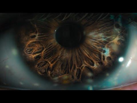 Irama - La genesi del tuo colore (Official Video) [Sanremo 2021] - IRAMA OFFICIAL