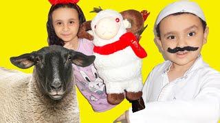 الكبير وخروف العيد Eid al-Adha!!