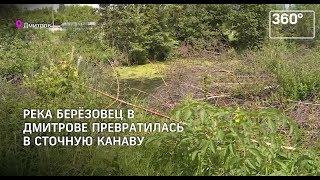Река Березовец в Дмитрове - на грани экокатастрофы