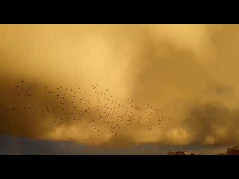 Torremaggiore, la natura è da film, spettacolo puro