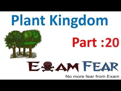 Biology Plantae part 20 (Dicots & monocots) CBSE class 11 XI