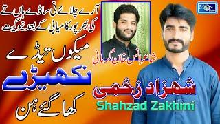 Mekon Tede Nakehry - Shahzad Zakhmi - Official Video - Latest Saraiki Song - Moon Studio Pakistan