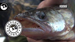 Рыбалка на Ухре | Народный проект