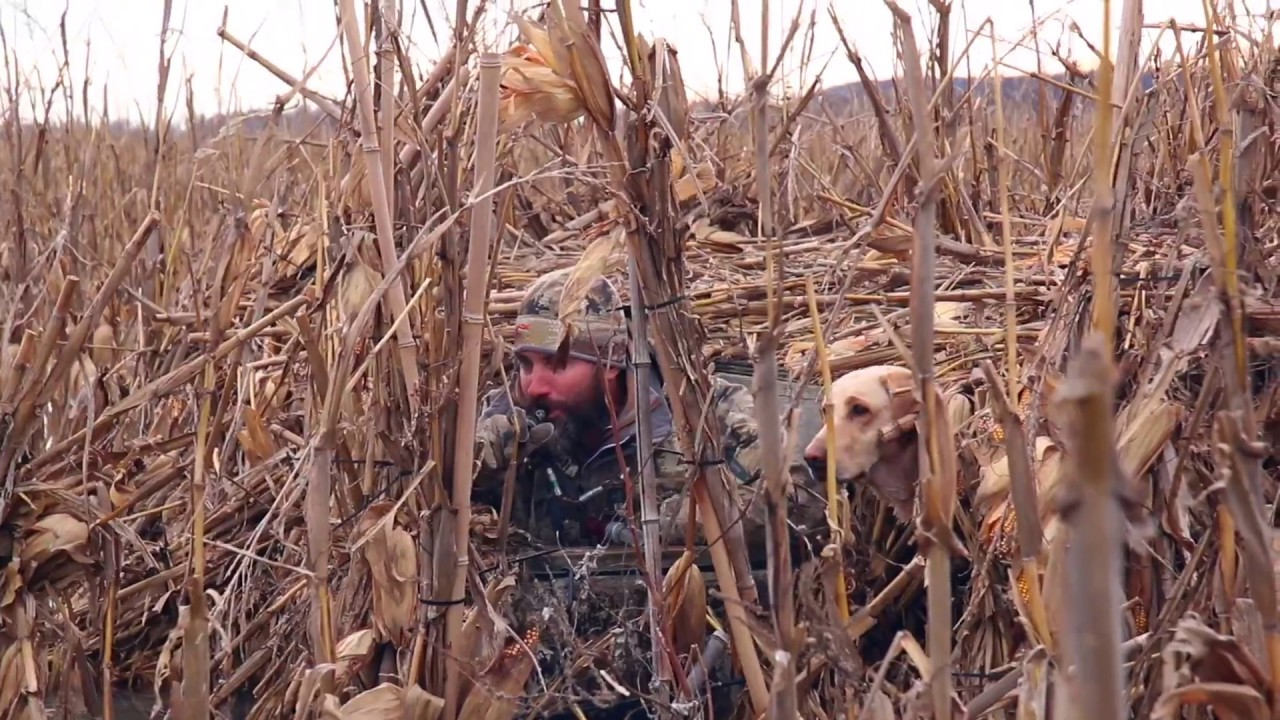 Lincoln County MO Duck Club & Hunting Land for Sale