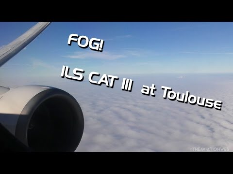 ILS CAT III | Boeing 737 Landing in Dense Fog at Toulouse Bl